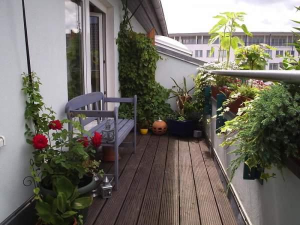 Сад на открытом балконе.